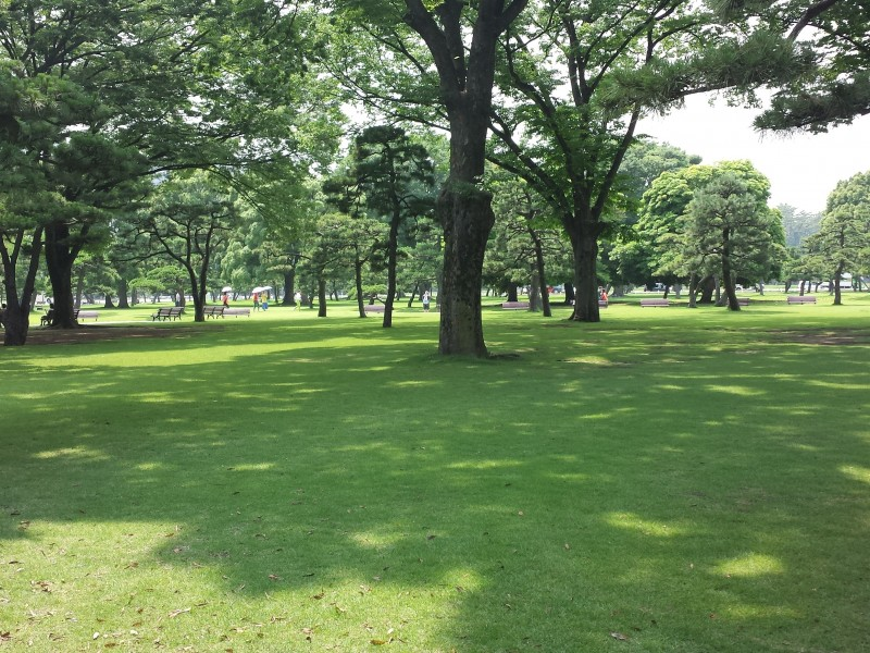 Select Your Lunch at Tokyo Station, a Mecca for Gourmet Take-out, and Enjoy Picnic at Kokyo-Gaien.