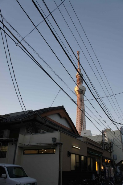 Finally Enjoy the Stunning Tokyo Skytree! It Looks Quite Different at Day and Night.
