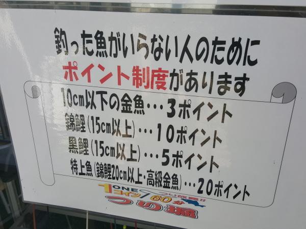 20150911_143020